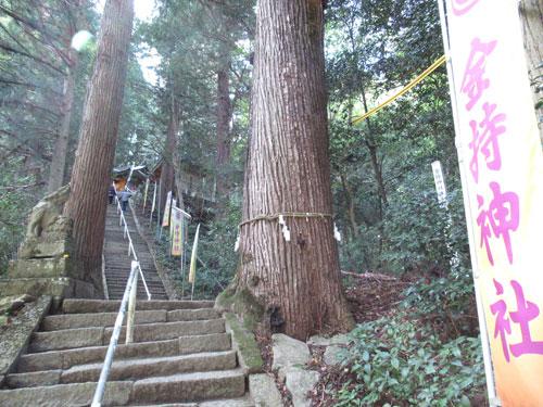 長い階段の参道の上に拝殿が見えます